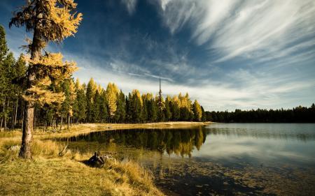 Картинки озеро, деревья, небо, пейзаж
