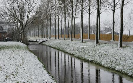 Фотографии дорога, снег, деревья
