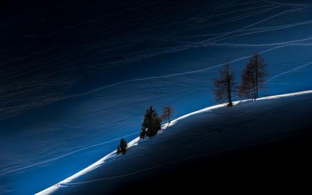 Картинки зима, деревья, свет, пейзаж