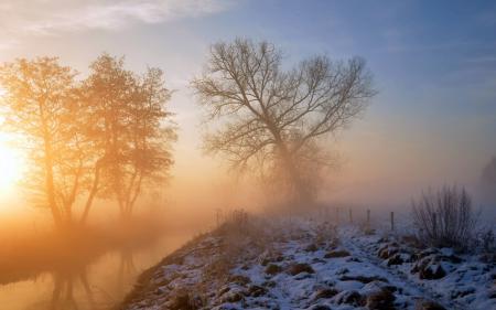 Фото утро, река, туман, пейзаж