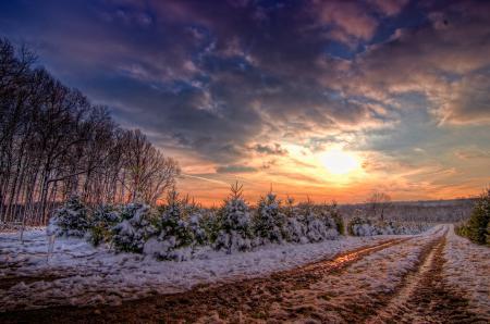 Картинки зима, снег, дорога, колея