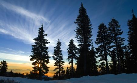 Фото природа, пейзаж, зима, снег