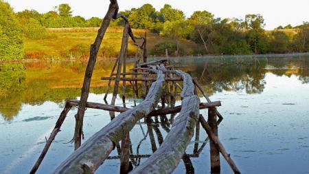 Обои мост, вода, река