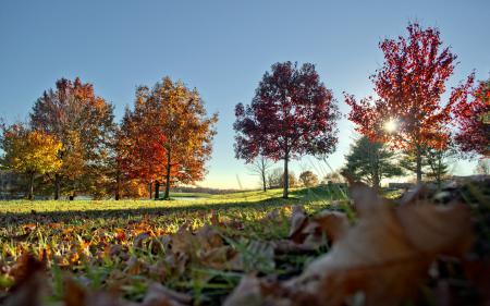 Обои пейзажи, природа, парки, осень