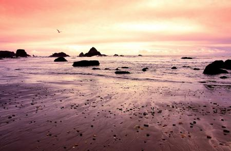 Фотографии природа, закат, океан, побережье
