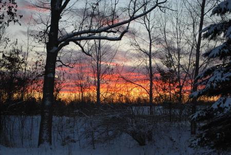 Заставки december fire, зима, лес, закат