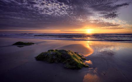 Обои море, солнце, дорожка, света