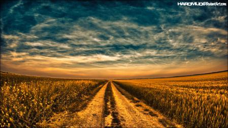 Фото дорога, небо, поле