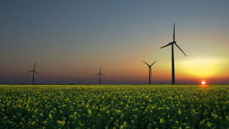 Заставки ветряки, поле, солнце, закат