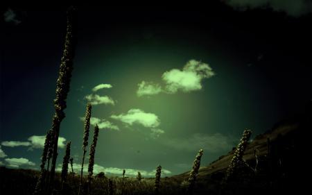 Фотографии Dark, Harmony, Wallpaper, небо