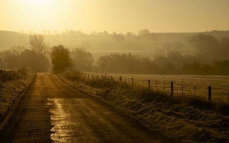 Картинки утро, дорога, туман