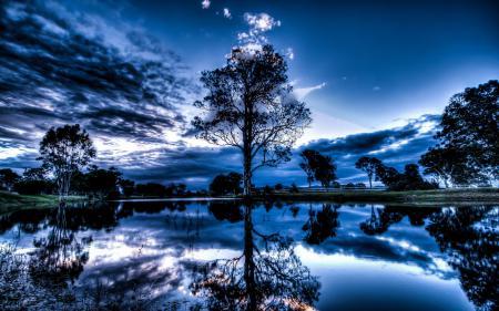Фото ночь, озеро, дерево, пейзаж