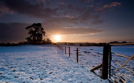 Картинки зима, снег, забор, деревья