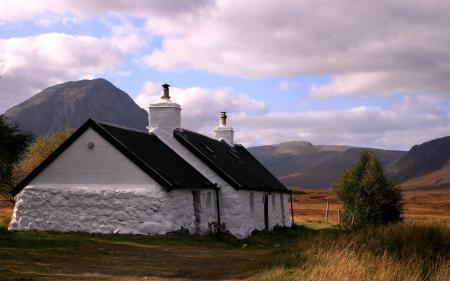 Картинки трава, дом, белый, побелка
