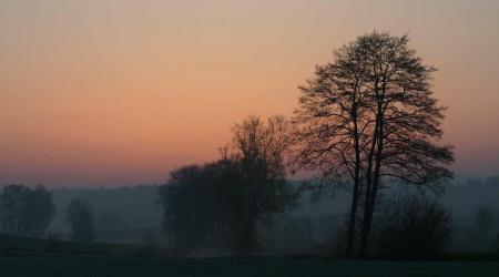 Заставки пейзаж, природа, деревья, закат