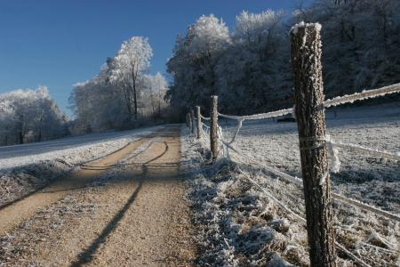 Заставки дорога, зима, деревья, снег