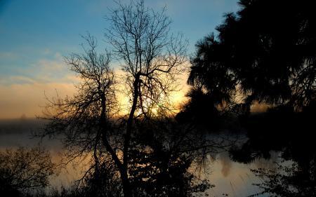 Заставки природа, закат, деревья, берег