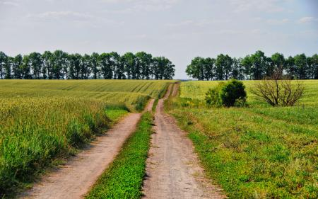 Обои пейзажи, природа, фото, дорога