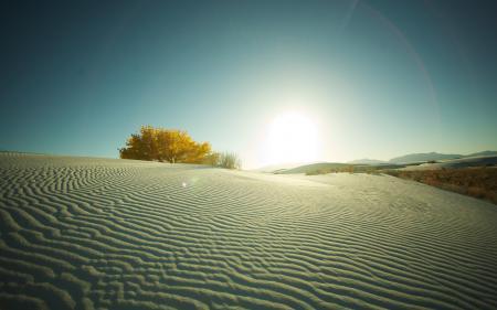 Фото пейзажи, пустыня, солнце, песок