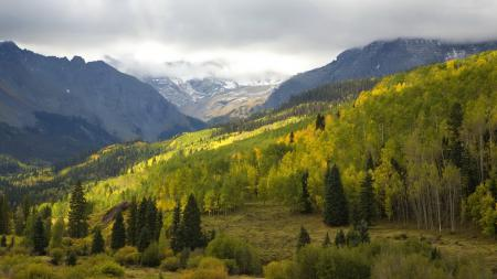 Фото горы, лес, облака