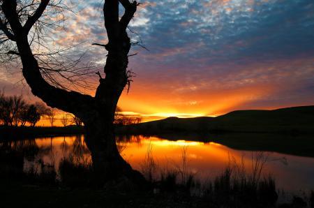 Заставки закат, небо, озеро, дерево