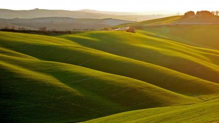 Фото утро/свет, поле, дорога, пейзаж