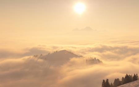 Картинки пейзажи, природа, туман