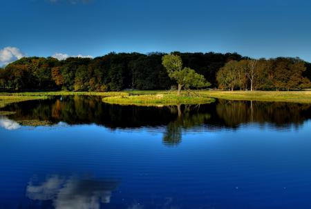 Заставки пейзаж, водоем, деревья