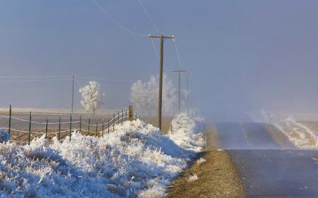 Обои утро, дорога, туман, иней
