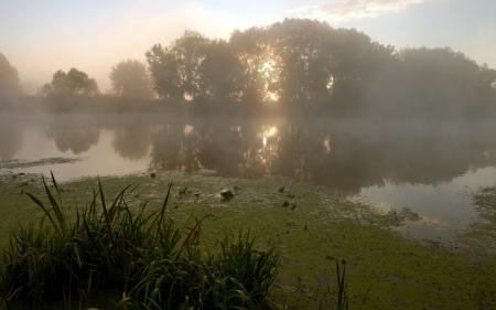 Фотографии утро, озеро, туман, пейзаж
