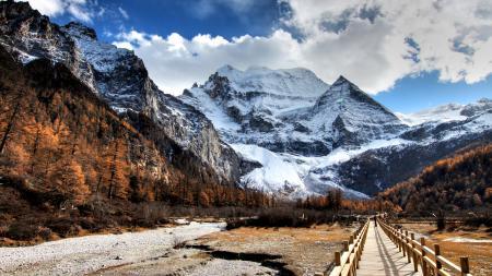 Фото Горы, снег, деревья