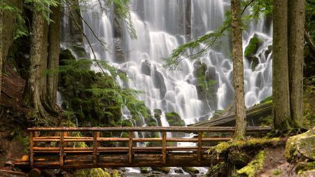 Картинки водапад, деревья, мост, камни