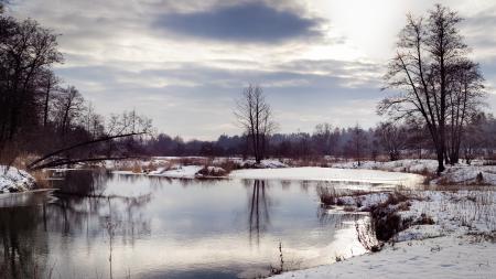 Обои река, зима, снег, дерево