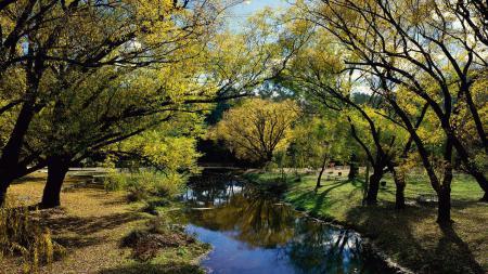 Фотографии парк, речка, пейзаж, ранняя