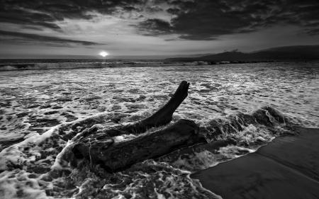 Фото море, черно-белое, волны, вода