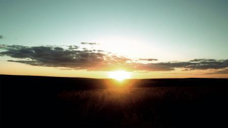 Фото поле, закат, солнце, лучи