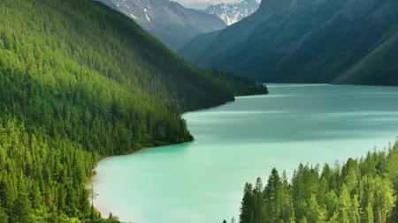 Фотографии горы, озеро, деревья, тайга