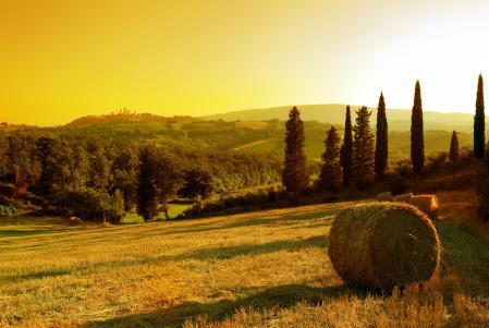 Фотографии Sunset in village, закат, солнце, деревья
