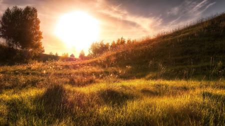 Фотографии закат, поле, свет, пейзаж