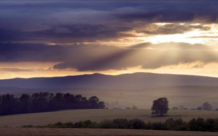 Фотографии небо, поле, закат, пейзаж