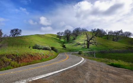 Обои дорога, небо, деревья, пейзаж