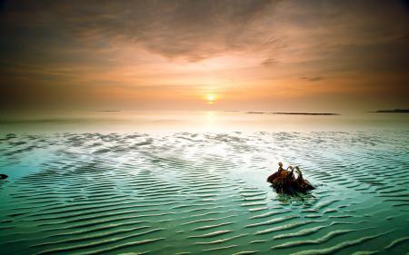 Фотографии ночь, море, небо, пейзаж