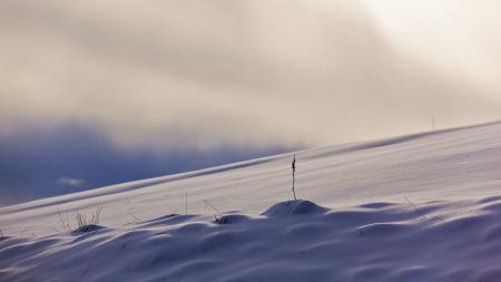 Обои зима, поле, снег, природа