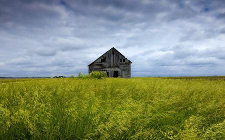 Фотографии поле, дом, пейзаж