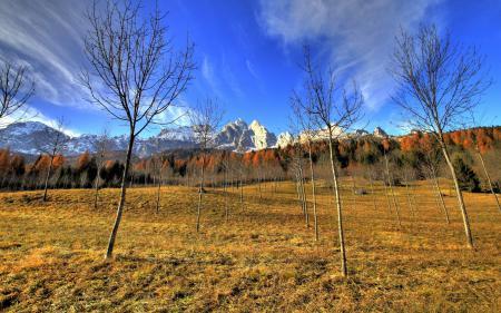 Фотографии небо, горы, склон, деревья
