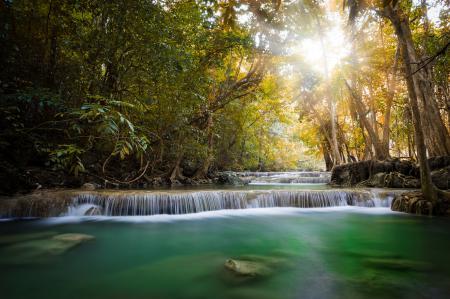 Фотографии пейзаж, джунгли, река, лучи солнца