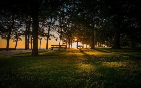 Картинки утро, скамья, парк, пейзаж