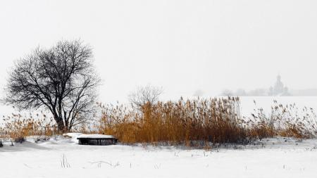 Картинки зима, поле, туман