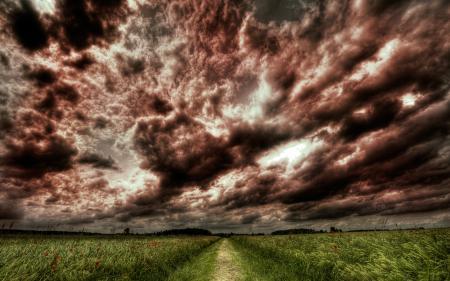 Фото hdr, пейзажи, фото, поле