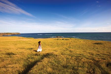Картинки море, берег, девушка